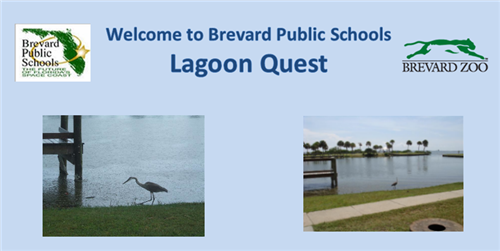 Lagoon Quest welcome banner