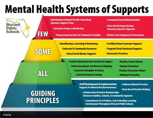 Mental Health Systems of Support