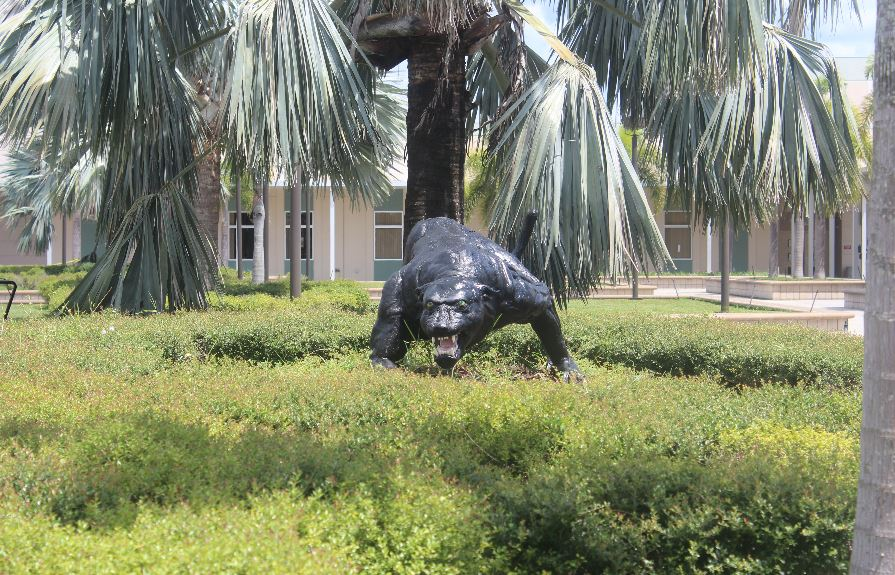 Heritage's mascot, the black panther